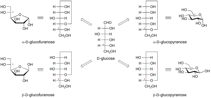 L Glucose Alpha ampbeta glucose png