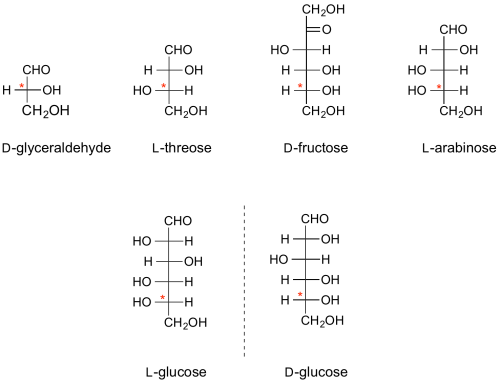 "Fischer projections of representative sugars - the configurational ""D"" or ""L"" stereogenic centre is denoted with an asterix."
